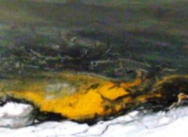 2011-1 ORIS